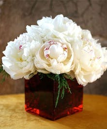 Beautiful Peonies arriving in white.