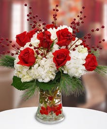 Vivid red roses – all dressed up for the holidays