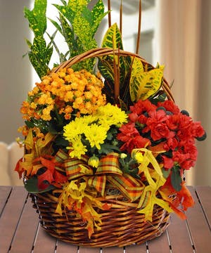 This abundant and colorful basket of potted plants is like a stroll through the countryside in autumn.