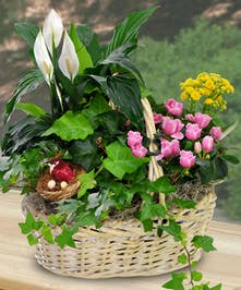 This blooming garden basket will last long after the holiday.