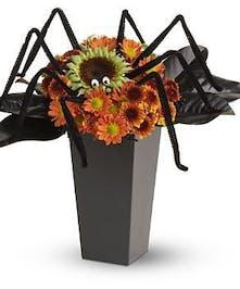 Spooktacular Spider