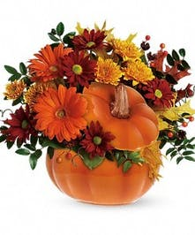 Country Pumpkin - Mancuso's Florist Inc.