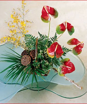 Striking Design featuring Anthuriums