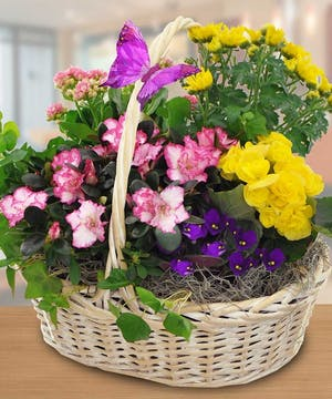 Blooming Garden Baskets