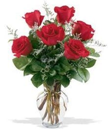 6 Long Stem Red Roses