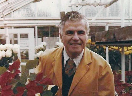 Frank Senior holds a pot of poinsettias in the greenhouse, circa 1970